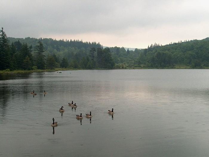 9. Spruce Knob Lake
