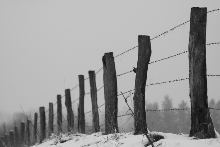 6. Barbed wire