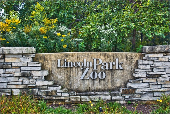10. The Lincoln Park Zoo is the nation's oldest public zoo