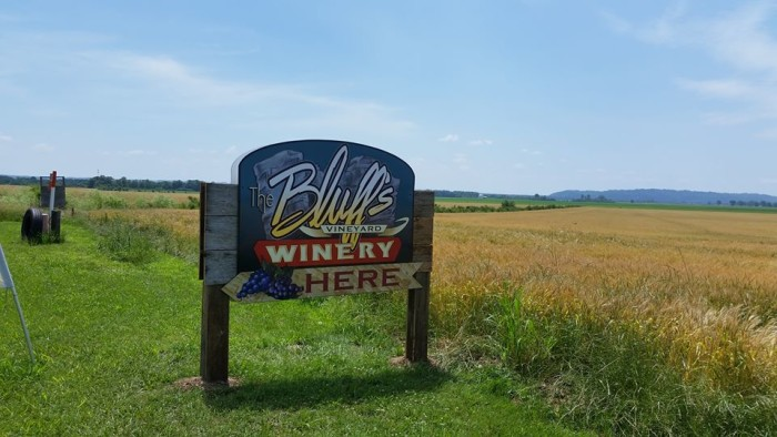1. The Bluffs Vineyard and Winery (Ava)