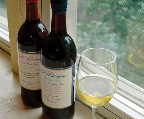 2. Wild Blossom Meadery, Winery and Brewery (Chicago)