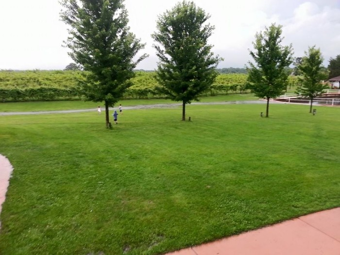 7. Mackinaw Valley Winery (Mackinaw)