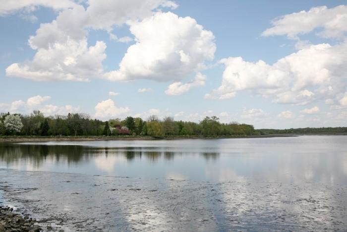 2. Delavan Lake (Walworth Co.)
