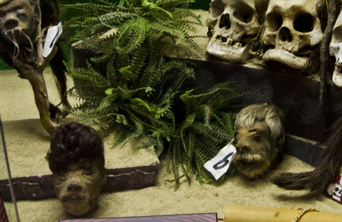 6. Some of the exhibits in Ripley's in Wisconsin Dells have me gawking