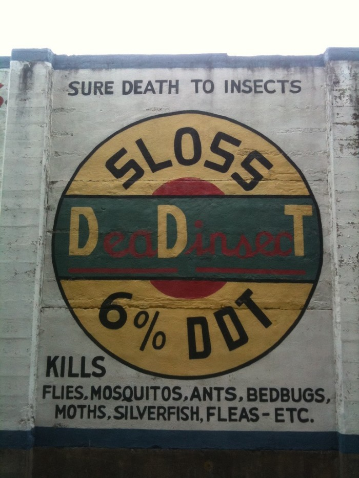 10. Wisconsin was the first state to prohibit the sale and distribution of DDT (1970)