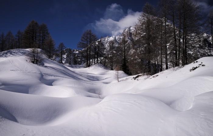 1. The snow