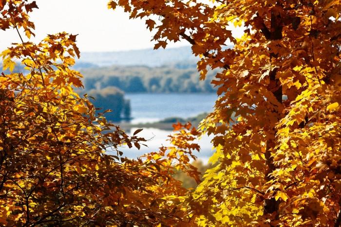 3. Autumn