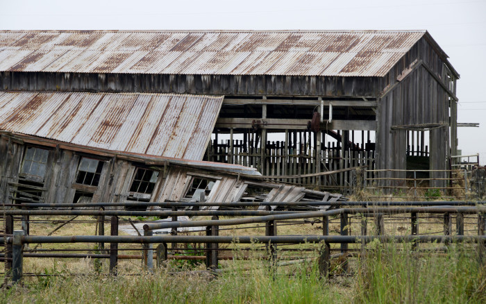 1) Located at the base of Mauna Kea, this barn has been abandoned for quite some time.