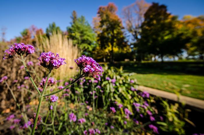 10. Noerenberg Gardens on Lake Minnetonka.