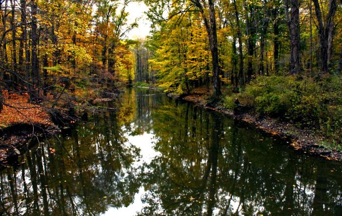 8) Mill Creek Park