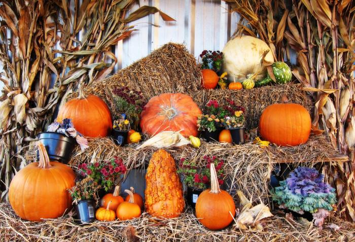 4) Wellsville Harvest Fest