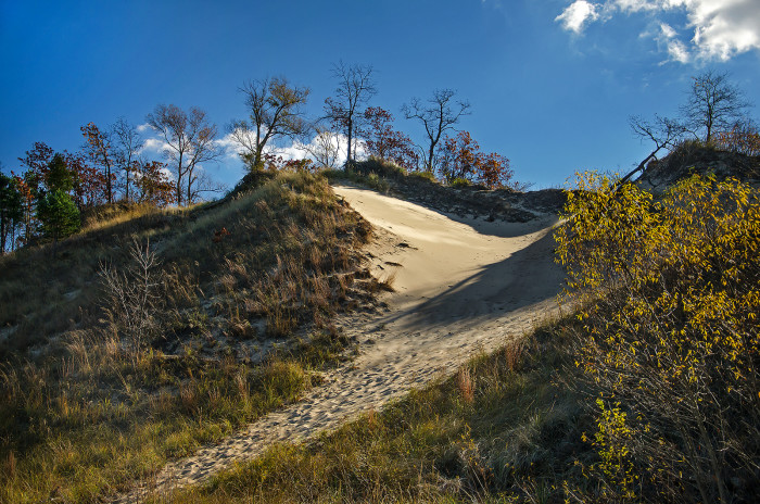 11. Another very pretty hill at the Indiana Dunes. Yes, even Indiana has sandy hills.