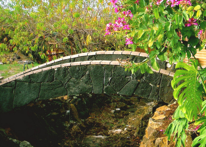 11) An orchid tree lives near this old stone bridge in upcountry Maui.