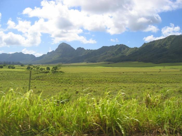 11) Haupu, Kauai