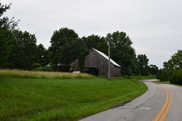 11. Lupus, Moniteau County