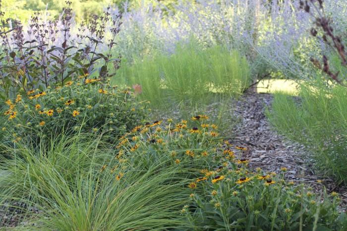 5. Dyck Arboretum of the Plains (Hesston)