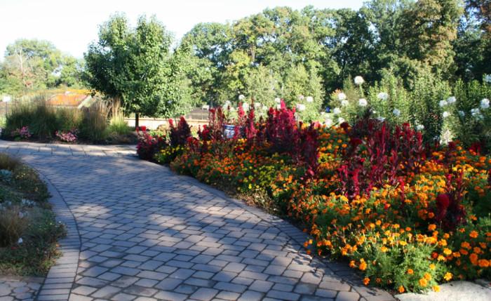 11. Wellfield Botanic Gardens