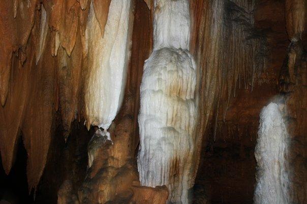 14. Round Spring Caverns, Eminence