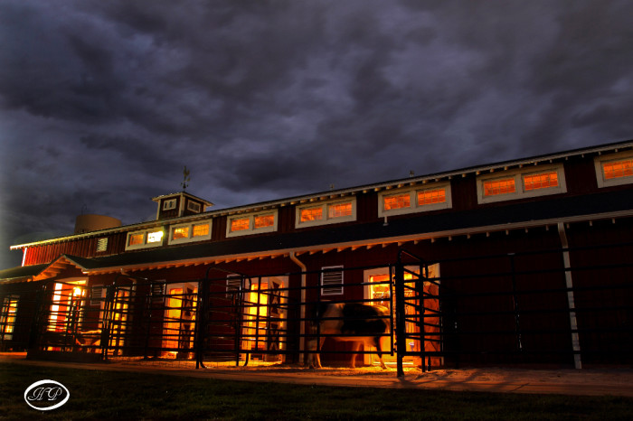 14. Springfield, Rutledge Wilson Farms