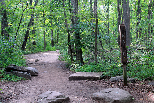 8. Ringing Rocks County Park Trails