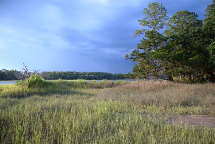 4) Skidaway Island, GA