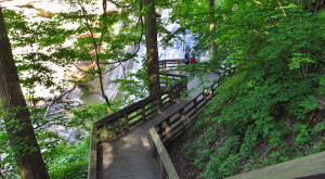 12 Trails In Ohio You Must Take If You Love The Outdoors