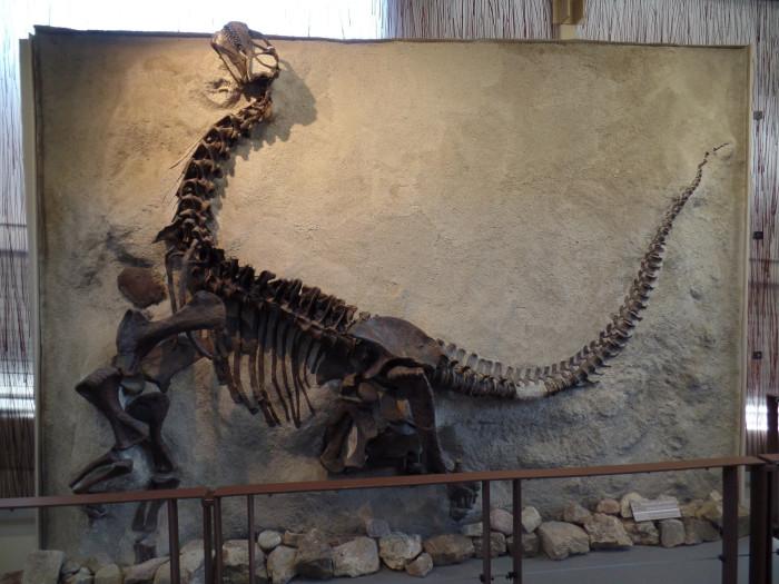 2) Utah Has the Most Jurassic-Era Dinosaurs