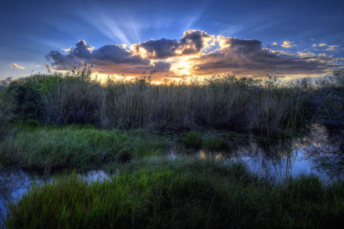 4. Everglades National Park