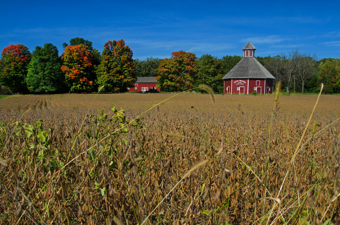 9. This is what a farm looks like in the fall in Indiana. Isn't that nine-sided prairie barn spectacular?
