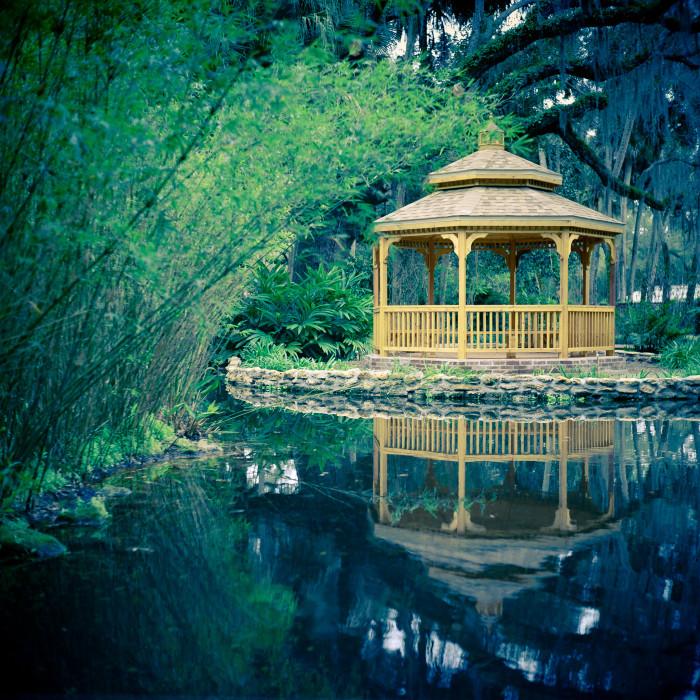 10. Washington Oaks Gardens State Park