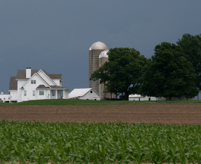 14. This Lafayette County farm near Waterloo might be my favorite.  It's so beautiful it doesn't even really look real.