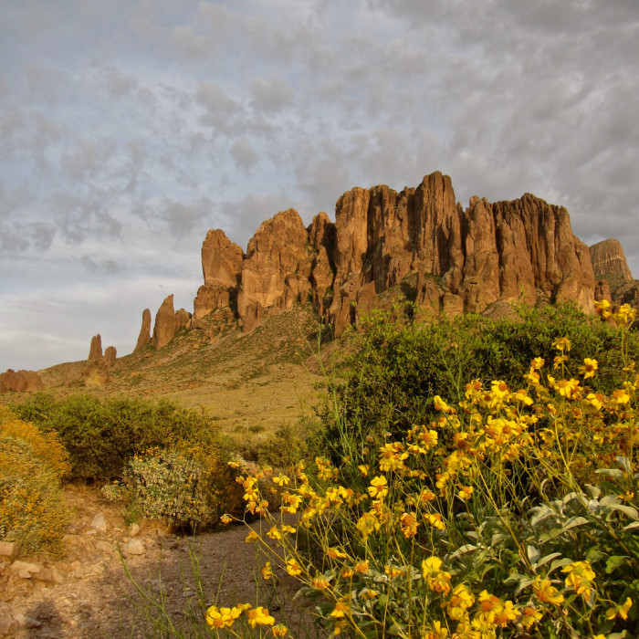 9. Lost Dutchman State Park for an iconic Sonoran desert photo.