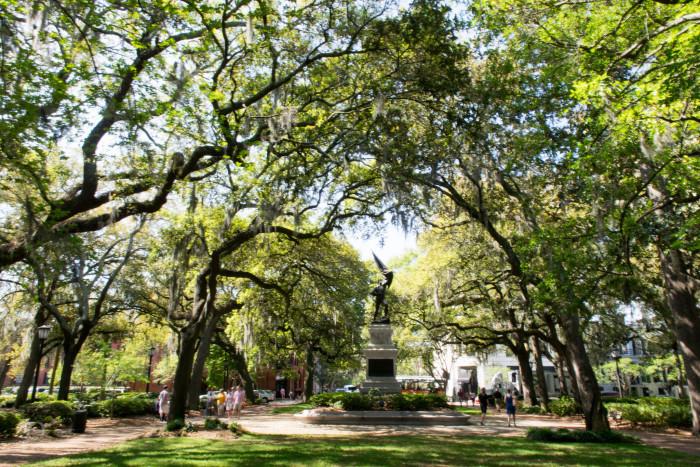 5) Savannah