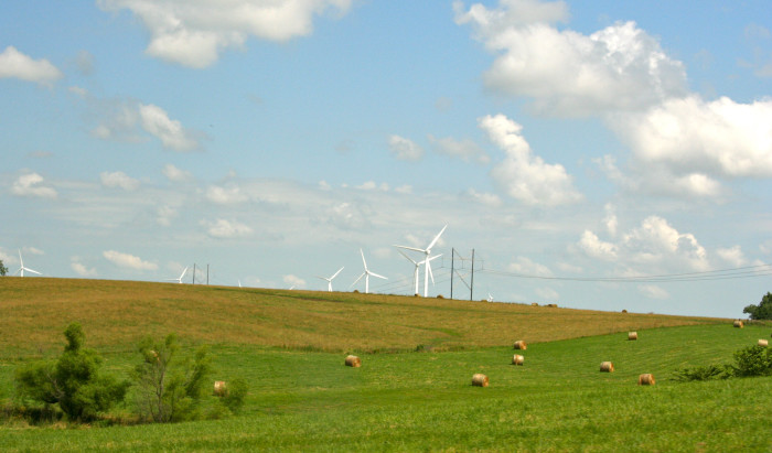 15. A wind farm near Albany.  These are fun to watch from the road as you pass by.  They are much bigger than you might think.