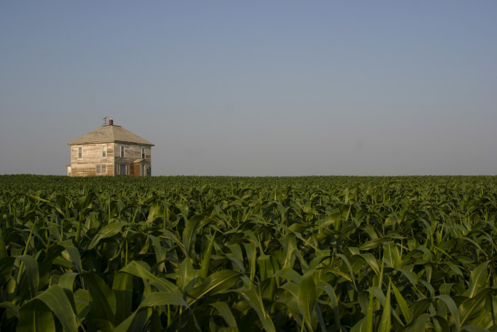 3. Is anyone else slightly terrified of what might be in an abandoned house in the middle of a corn field?