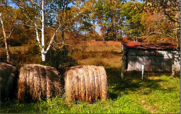 1. Check out this gorgeous shot of a farm somewhere in Southern Indiana. I love the bales of hay!