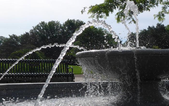14. Muriel Sahlin Arboretum, Roseville.