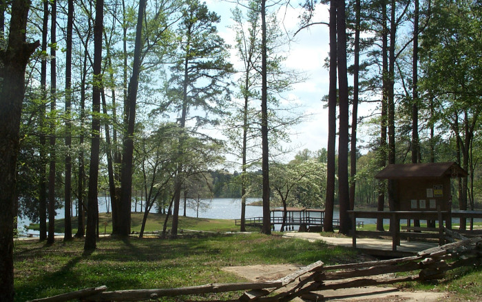 Chewalla Lake & Holly Springs National Forest 3