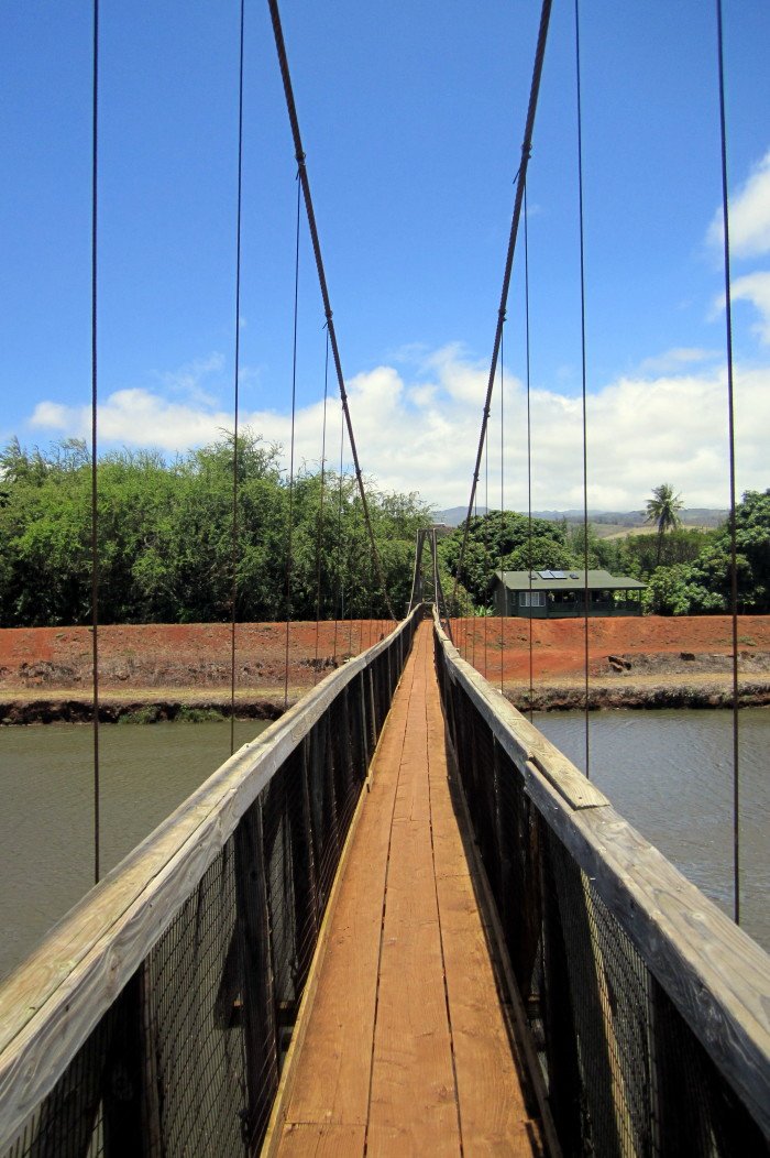 2) This swinging bridge, constructed in 1911 and rebuilt in 1922, is the only way to access the Taro fields across the Hanapepe River.