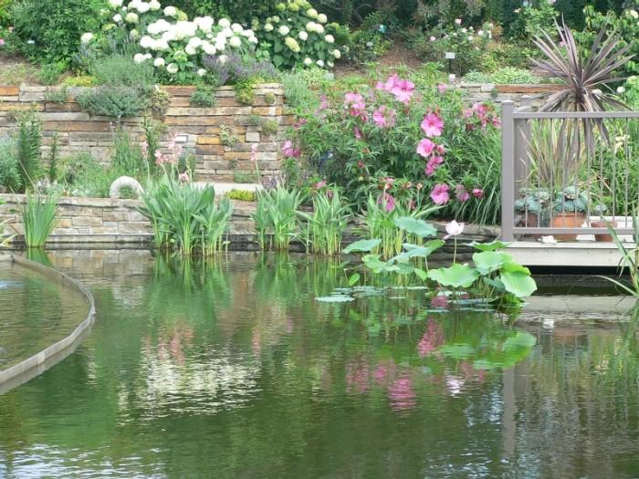 2.2. Powell Gardens 2