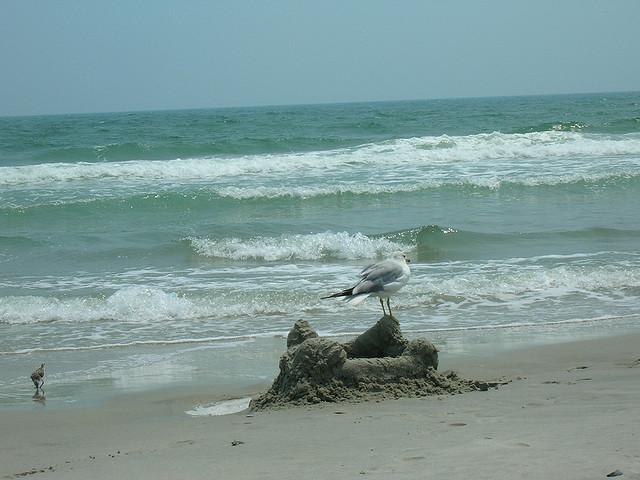 8. Hammocks Beach State Park
