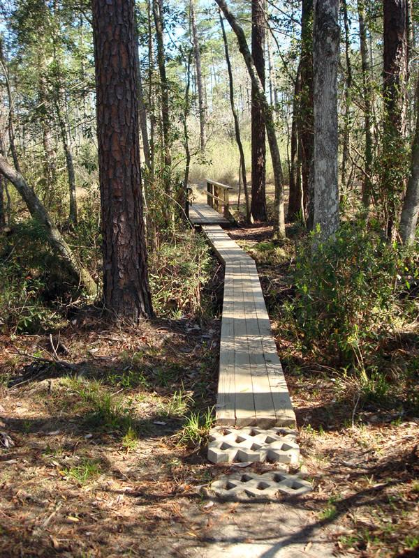 2. Tuxachanie Hiking Trail in the DeSoto National Forest