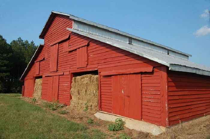 7. Located along Hwy 14 in Selma, this beautiful red barn is definitely picture worthy.