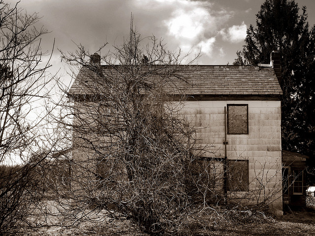 7. This old building on an abandoned Bucks County farm looks kind of like a face that's sheepishly hiding behind that tree...