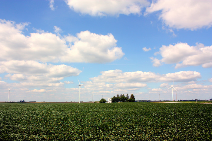7. This is a picture of the Fowler Ridge Windmill Farm located in Benton County. There are actually several windmill farms in Indiana.
