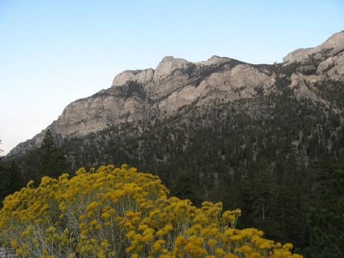 10. Fletcher Peak - Spring Mountains National Recreation Area