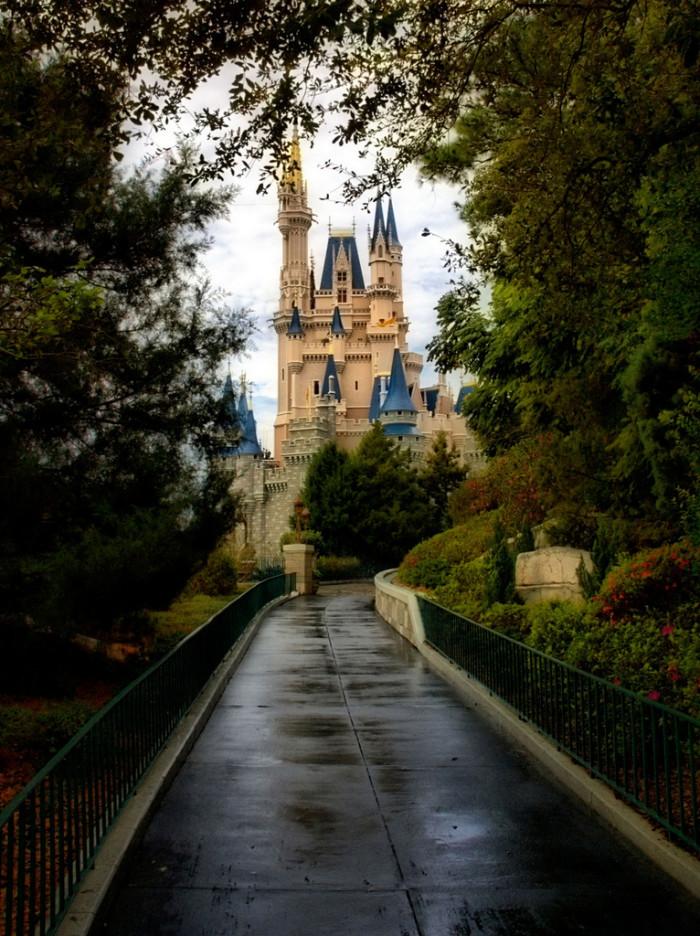 3. Walt Disney World