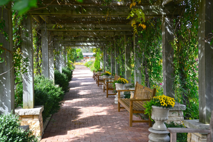 2. Take a stroll around Reiman Gardens in Ames, and sneak a kiss under the shaded trellis.