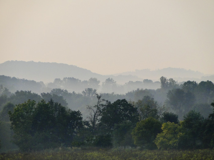 2. Not sure where in Indiana this picture was taken, but the foggy morning is what makes me really love this picture!