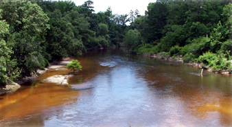 3. Black Creek Trail in the DeSoto National Forest